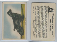 F279-5 Quaker, Challenge of the Yukon, Dog Cards, 1950, Cocker Spaniel