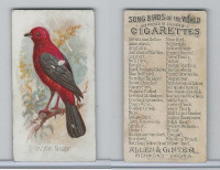 N23 Allen & Ginter, Song Birds of the World, 1890, Brazilian Tanager