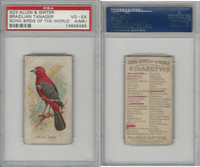 N23 Allen & Ginter, Song Birds of the World, 1890, Brazilian Tanager, PSA 4 MK