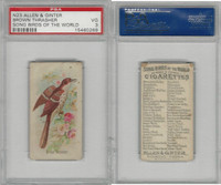 N23 Allen & Ginter, Song Birds of the World, 1890, Brown Thrasher, PSA 3 VG