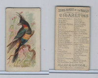 N23 Allen & Ginter, Song Birds of the World, 1890, Crested Sparactes