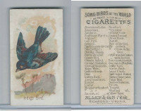 N23 Allen & Ginter, Song Birds of the World, 1890, Indigo Bird
