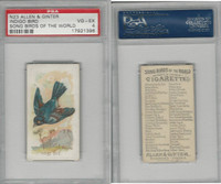 N23 Allen & Ginter, Song Birds of the World, 1890, Indigo Bird, PSA 4 VGEX