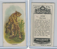 C40 British American Tobacco, Animals, 1916, #13 Leopard