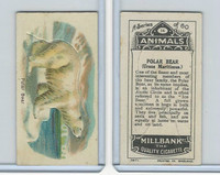 C40 British American Tobacco, Animals, 1916, #14 Polar Bear