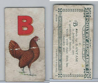 C28 Imperial Tobacco, Poultry Alphabet, 1924, #2 B For Bantam