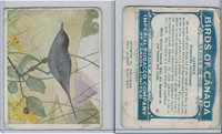 C2 Imperial Tobacco, Birds Of Canada, 1920's, #87 Catbird