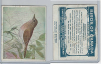 C2 Imperial Tobacco, Birds Of Canada, 1920's, #95 Wilson's Thrush