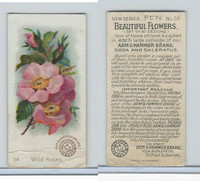 J16s, Church & Dwight, Beautiful Flowers Small, 1895, #54 Wild Roses