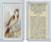 C130-24 CWS, British & Foreign Birds, 1938, #13 Goldfinch