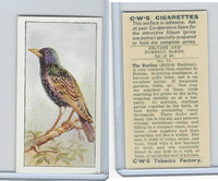 C130-24 CWS, British & Foreign Birds, 1938, #17 Starling