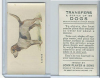 P72-91B Players - Transfers, Dogs, 1931, Beagle