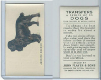 P72-91B Players - Transfers, Dogs, 1931, Cocker Spaniel