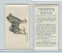 P72-91B Players - Transfers, Dogs, 1931, Elkhound