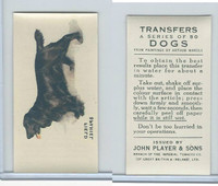 P72-91B Players - Transfers, Dogs, 1931, Field Spaniel