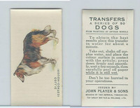 P72-91B Players - Transfers, Dogs, 1931, Collie Rough-coated