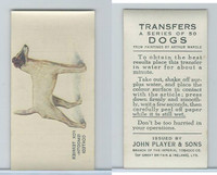 P72-91B Players - Transfers, Dogs, 1931, Fox Terrier Smooth-coated