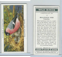 P72-142 Player, Wild Birds, 1932, #2 Bullfinch and Young