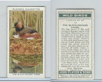 P72-142 Player, Wild Birds, 1932, #13 The Black-Necked Grebe