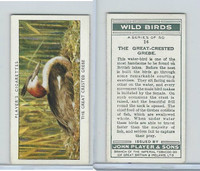 P72-142 Player, Wild Birds, 1932, #14 The Great-Crested Grebe