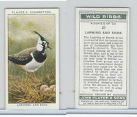 P72-142 Player, Wild Birds, 1932, #20 Lapwing and Eggs