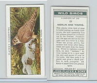 P72-142 Player, Wild Birds, 1932, #23 Merlin and Young