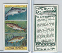 O2-94 Ogdens, Boy Scouts, 1914, #208 Distinguish Fish