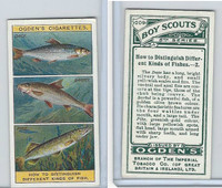 O2-94 Ogdens, Boy Scouts, 1914, #209 Distinguish Fish