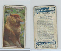 P72-115 Player, Natural History, 1924, #31 Proboscis Monkey