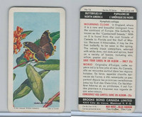 FC34-9 Brook Bond, Butterflies North America, 1965, #16 Mourning Cloak