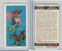 FC34-9 Brook Bond, Butterflies North America, 1965, #17 Red Admiral
