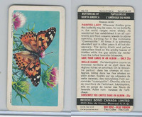 FC34-9 Brook Bond, Butterflies North America, 1965, #18 Painted Lady