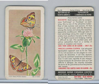 FC34-9 Brook Bond, Butterflies North America, 1965, #20 Buckeye