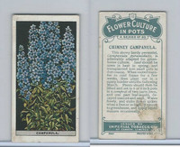 C13 Imperial Tobacco, Flower Culture, 1925, #12 Chimney Campanula