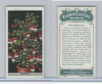 C13 Imperial Tobacco, Flower Culture, 1925, #24 Fuchsia