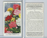 W62-140 Wills, Garden Flowers, 1939, #11 Annual Carnation