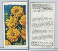 W62-140 Wills, Garden Flowers, 1939, #22 Geum