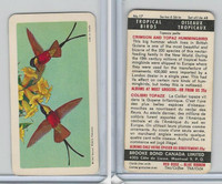 FC34-8 Brooke Bond, Tropical Birds, 1964, #17 Crimson & Topaz Hummingbird