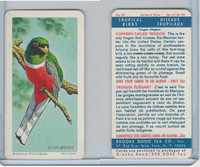 FC34-8 Brooke Bond, Tropical Birds, 1964, #20 Coppery Tailed Trogon