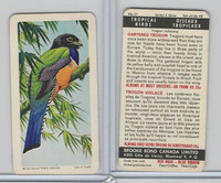 FC34-8 Brooke Bond, Tropical Birds, 1964, #21 Gartered Trogon