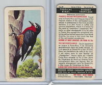 FC34-8 Brooke Bond, Tropical Birds, 1964, #29 Puerto Rican Woodpecker