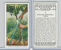 W62-142 Wills, Garden Hints, 1938, #16 Staking Standard Trees
