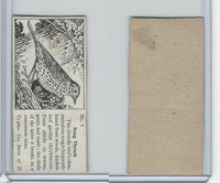T0-0 Typhoo Tea, Common British Birds, 1955, #5 Song Thrush