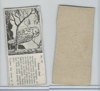 T0-0 Typhoo Tea, Common British Birds, 1955, #20 Tawny Owl