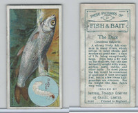 C11 Imperial Tobacco, Fish & Bait, 1924, #21 Dace