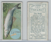 C11 Imperial Tobacco, Fish & Bait, 1924, #23 Bleak