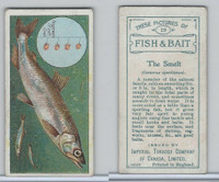 C11 Imperial Tobacco, Fish & Bait, 1924, #29 Smelt