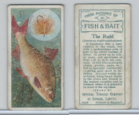 C11 Imperial Tobacco, Fish & Bait, 1924, #30 Rudd