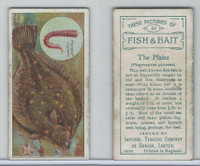 C11 Imperial Tobacco, Fish & Bait, 1924, #32 Plaice