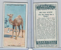 W62-127b Wills, Do You Know 2nd, 1924, #11 Camel has a Hump?